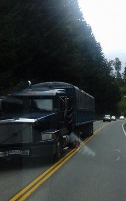 camion chileno