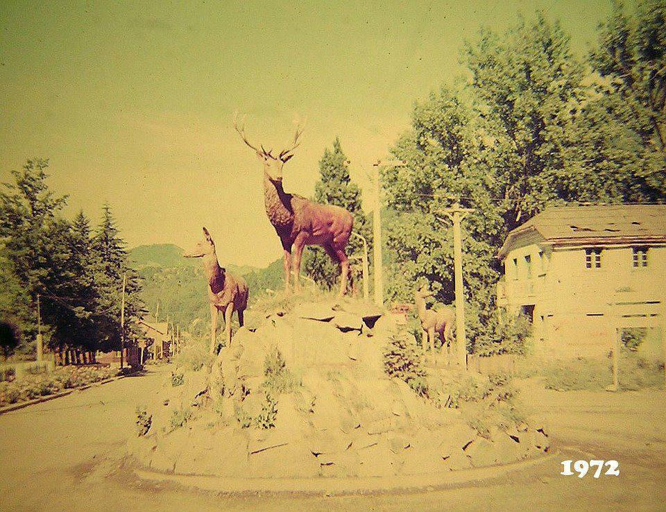 ciervos 1972