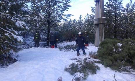 foto nevada municipio