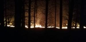 incendio en meqliquina 3