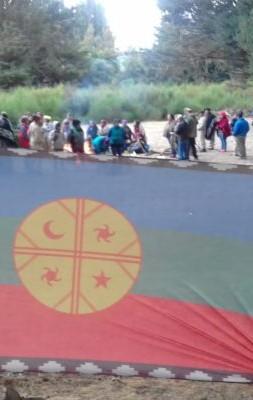 quila quina comunidad bandera