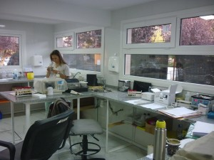 hospi lab 2