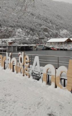 cartel sma nevado