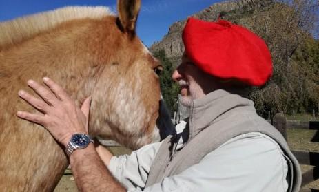 dr. arriaga caballo